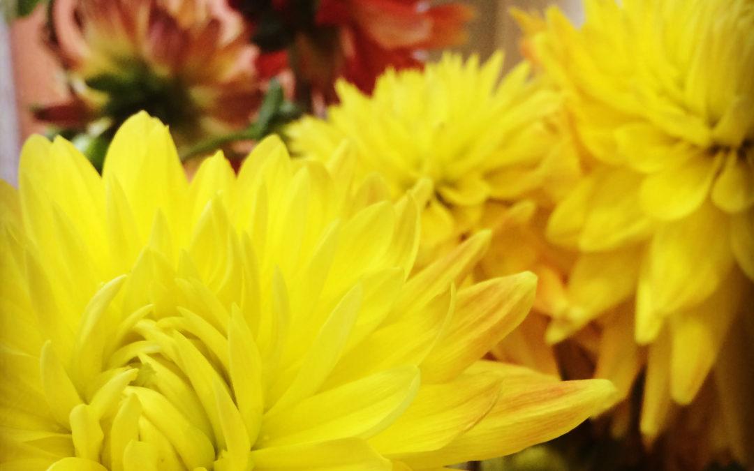 """Recenzija Andra Dzenīša simfonijai """"Mīlestība ir stiprāka"""""""